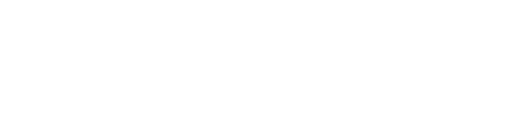 Netchex - New Logo full white-01-2.png